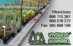 Viveros Madiedo - Villaviciosa