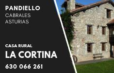 Casa Rural en Pandiello - Cabrales