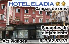 Hotel Cangas de On�s