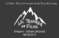 La terraza de Picos